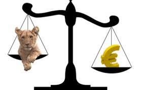 Cursuri valutare info utile alpha bank