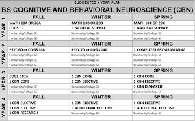 cognitive and behavioral neuroscience b s  majors
