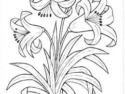 Coloring Pages For Spring Flowers Free Coloring Pages For Spring