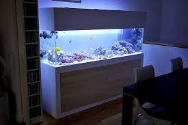 Modern Fish Tank Stand   Aquariums again!   Pinterest   Modern fish tank, Fish  tank stand and Tank stand