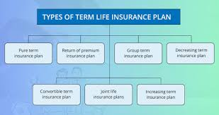 493/month with 1 crore term insurance cover. Term Insurance Coverage Claim Exclusions
