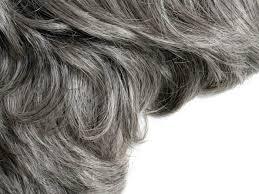 pre gray hair home remes