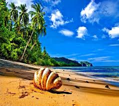 Beach View Hd wallpaper by SupeR__Soul ...