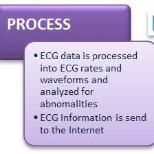 Input Process Output Ipo Chart Of Ecg Monitoring Device