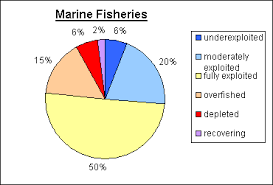 International Fisheries Policy Environmental Concerns