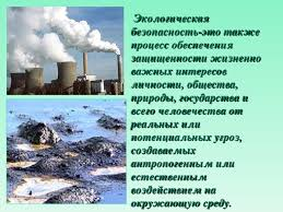 Экологическая безопасность экологический риск База фотографий Экологическим группам растений и животных