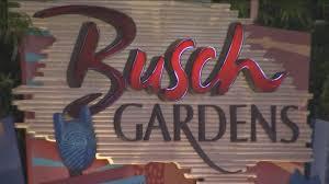 busch gardens parkgoer struck by celebratory gunfire story fox 13 ta bay