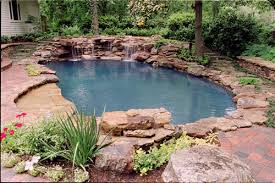 Natural Pool Designs Swimming Design Extraordinary Case History 17