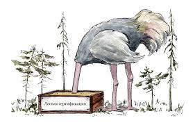 Лесной форум Гринпис России • Просмотр темы Что не так с fsc Обеспечивает ли fsc в действительности экологически ответственное социально выгодное и экономически жизнеспособное управление лесами