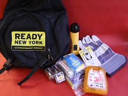 Art Bag Nyc Emergency Go Bag Kit