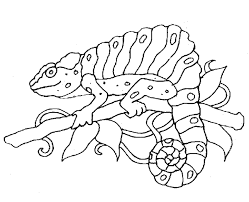 Zoo animal coloring pages coloring pages to print colouring pages coloring pages for kids coloring sheets pictures of different animals here, you will find the collection of free zoo animal coloring pages printable. Cute Zoo Animals Coloring Pages