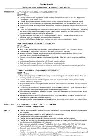 Download Application Security Resume Sample as Image file