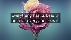 "Everything Has Beauty Quotes Best Of Confucius Quote ""Everything Has Its Beauty But Not Everyone Sees"