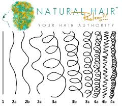 Hair Style Quiz natural hair typing chart 5082 by wearticles.com