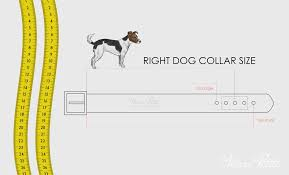 Small Dog Collar Size Chart How To Measure Dog Neck For Collar Marc Petite