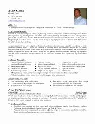 Private Chef Resume Sample Awesome Examples Personal Statements .