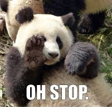 Quotes About Pandas Fascinating OH STOP PANDA Know Your Meme