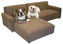 cheap pet furniture. Medium Plastic Dog Beds Extra Large Amazon Modular Pet Furniture Cheap Camo Walmart F