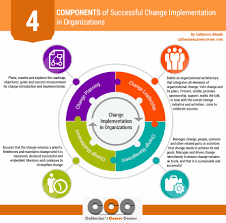 how to cope change at work ways catherine s career successful change implementation in organizations infographic