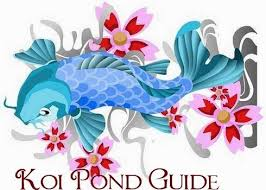 Koi Fish Meaning Is Good Fortune Or Luck They Also Are