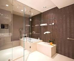 transitional bathroom ideas. Brilliant Bathroom Transitional Bathroom Ideas Brown  Design Idea Grey Designs Small Inside