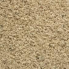 frieze carpet reviews Frieze Carpet Right for You or Not