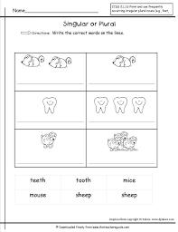 Possessive Nouns Worksheets Singular And Plural Work ~ Koogra