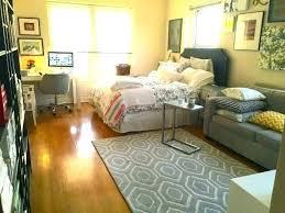 Image Interior Design Colesilva Splendid Best Furniture For Studio Apartment Small Flat