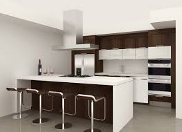 Custom Kitchen Cabinets Miami Build My Own Kitchen Cabinets Maxphotous Design Porter