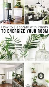 Decorate with plants in your home to reinvigorate and bring gorgeous color  to any room.