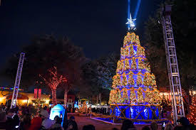 Best Places To Look At Christmas Lights In Dallas The Top Places To See Christmas Lights And Other Holiday