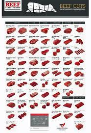 beef cuts diagram poster. Perfect Diagram Meat Cutting Chart Beef Cuts Chart Poster Color And Diagram Poster X