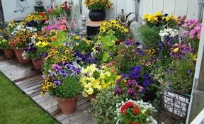 Small Picture Small Space Garden Design Ideas Design Your Life