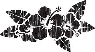 ハイビスカスのイラスト見本 白黒ハイビスカス Bouquet
