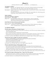 Qlikview Experience Resumes 100 Vba Developer Resume Writing Research Paper  Horses