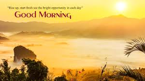 lovely view good morning nature wallpaper here for full size