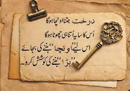 Islamic Beautiful Quotes In Urdu