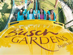 busch gardens ticket. photo 5 of 7 busch gardens tampa and seaworld orlando on monday increased the cost a single-day ticket