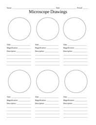 21702f31a203c20ee7d3ac8d5cef773a cell biology ap biology 25 best ideas about writing lab on pinterest idea lab on antecedent worksheets