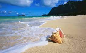 Beach Wallpaper - Hd Wallpaper Download ...
