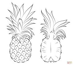 pineapple drawing. pineapple drawing p