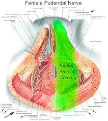pudendal neuralgia and pelvic pain