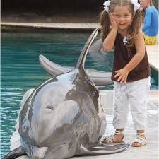 Gaby w a dolphin:) | Dolphins, Greats, Fish