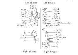Bassoon Trill Chart File Standard Bassoon Fingering Keys Diagram Png Wikimedia