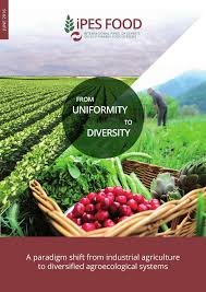 pdf from uniformity to diversity a paradigm shift from industrial agriculture to diversified agroecological systemsenter le