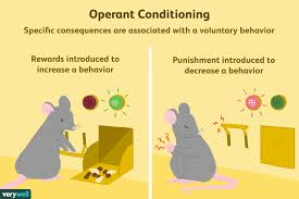 Classical Conditioning In The Classroom What Is Operant Conditioning And How Does It Work
