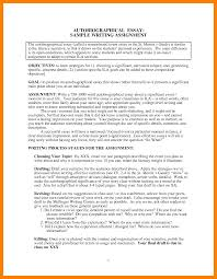 autobiography sample essay biography planning frame examples of a