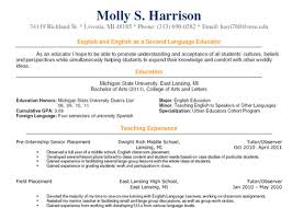 sample teacher resume - Google Search