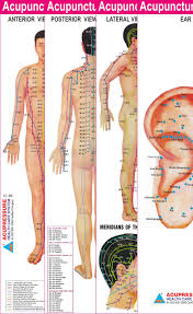 Buy Acupuncture Points Charts Set Of 4 Book Online At Low