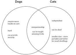 comparing dogs and cats essay essay on beowulf comparing dogs and cats essay